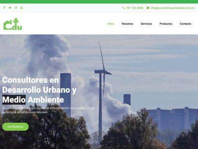 Sito Web: Consultores Ambientales