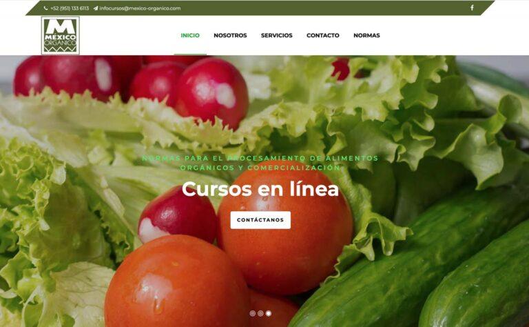 Diseño web de paginas organicas